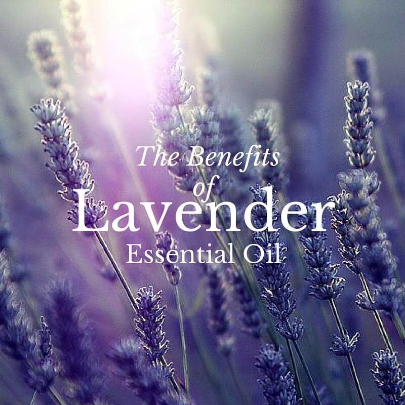 The Benefits of Lavender Oil With Salt Of The Earth